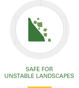 Icon, safe for unstable landscapes
